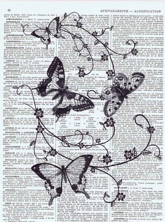 Gift, Upcyled Antique Book Page Prints, French Text, Paris, Butterfly Insect, Black and White, home decor, mothers day, special, deal