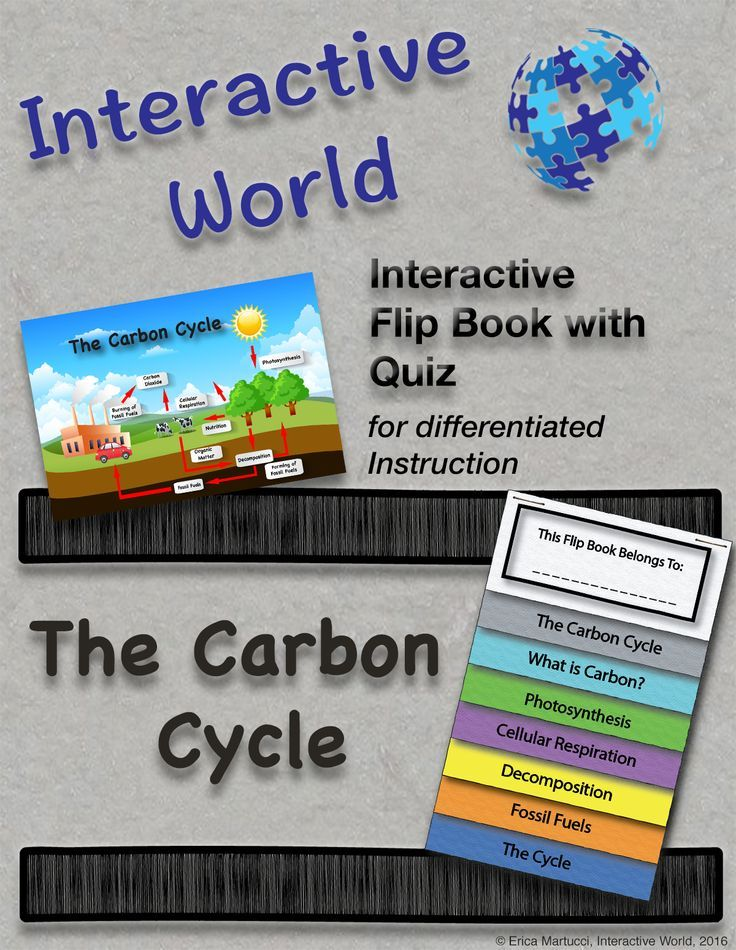 The carbon cycle interactive flip book and quiz pinterest grades 7 12 includes two student version and teacher key detailed description of what is carbon photosynthesis cellular respiration decomposition ccuart Choice Image