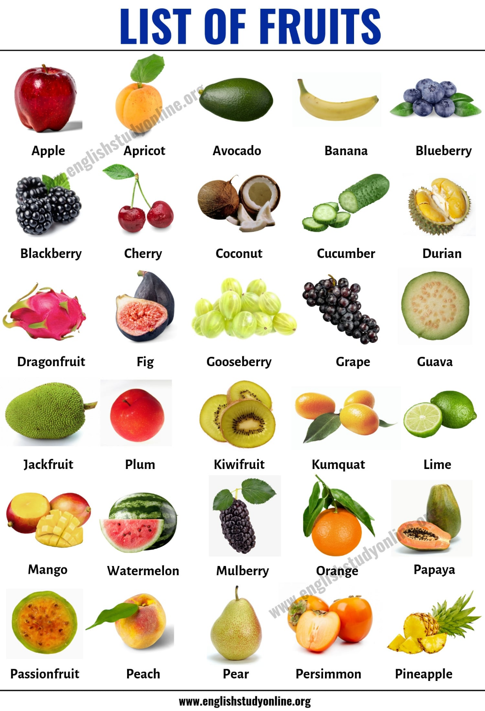 List Of Fruits List Of 40 Popular Fruit Names With Useful