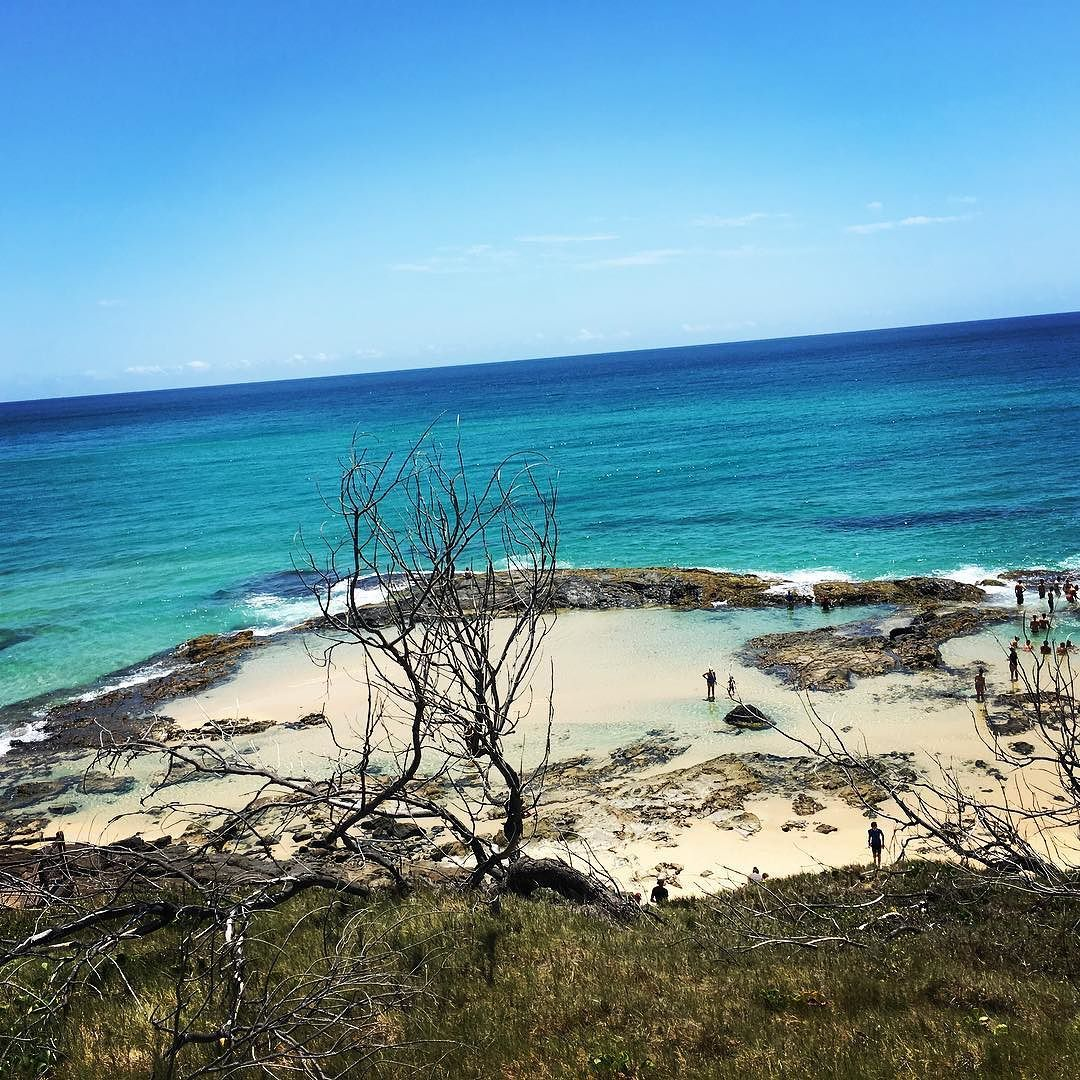 Fraser Island Australia: Good Morning From The Beautiful Champagne Pools Of Fraser