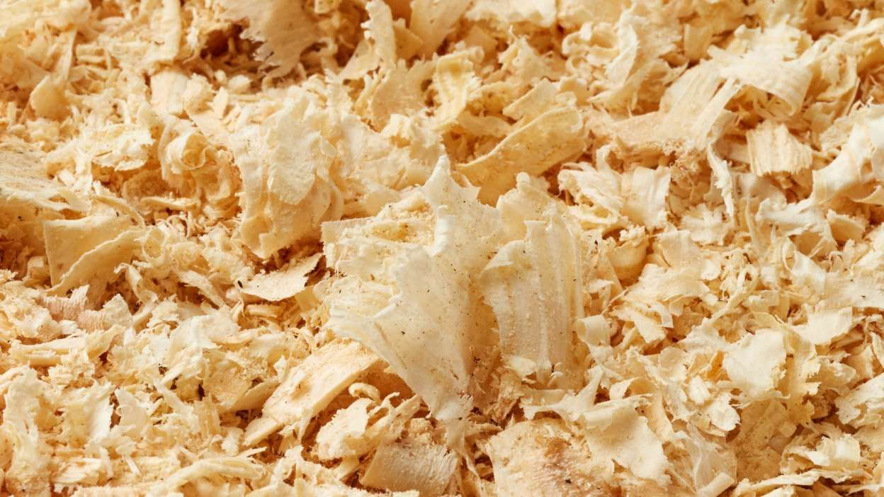 31 Foods Youre Eating That Contain Sawdust
