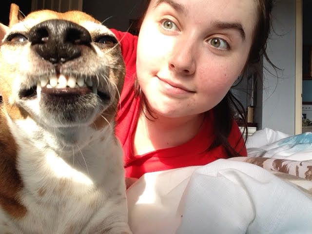 22 Dog Pictures That Will Definitely Brighten Your Day