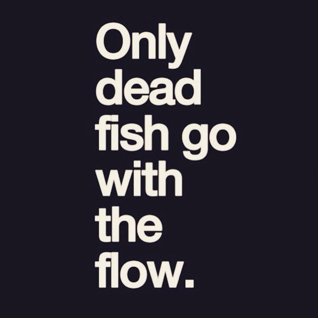 Only Dead Fish Q Frases De Inspiracion Pensamientos Y