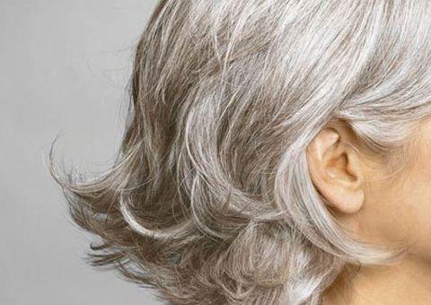 والشيب ينهض في الشباب كأنه ليل يصيح بجانبيه نهار هكذا قال الشاعر واصفا حال هذا المتسلل الأبيض Grey Hair Home Remedies Natural Gray Hair Grey Hair Looks