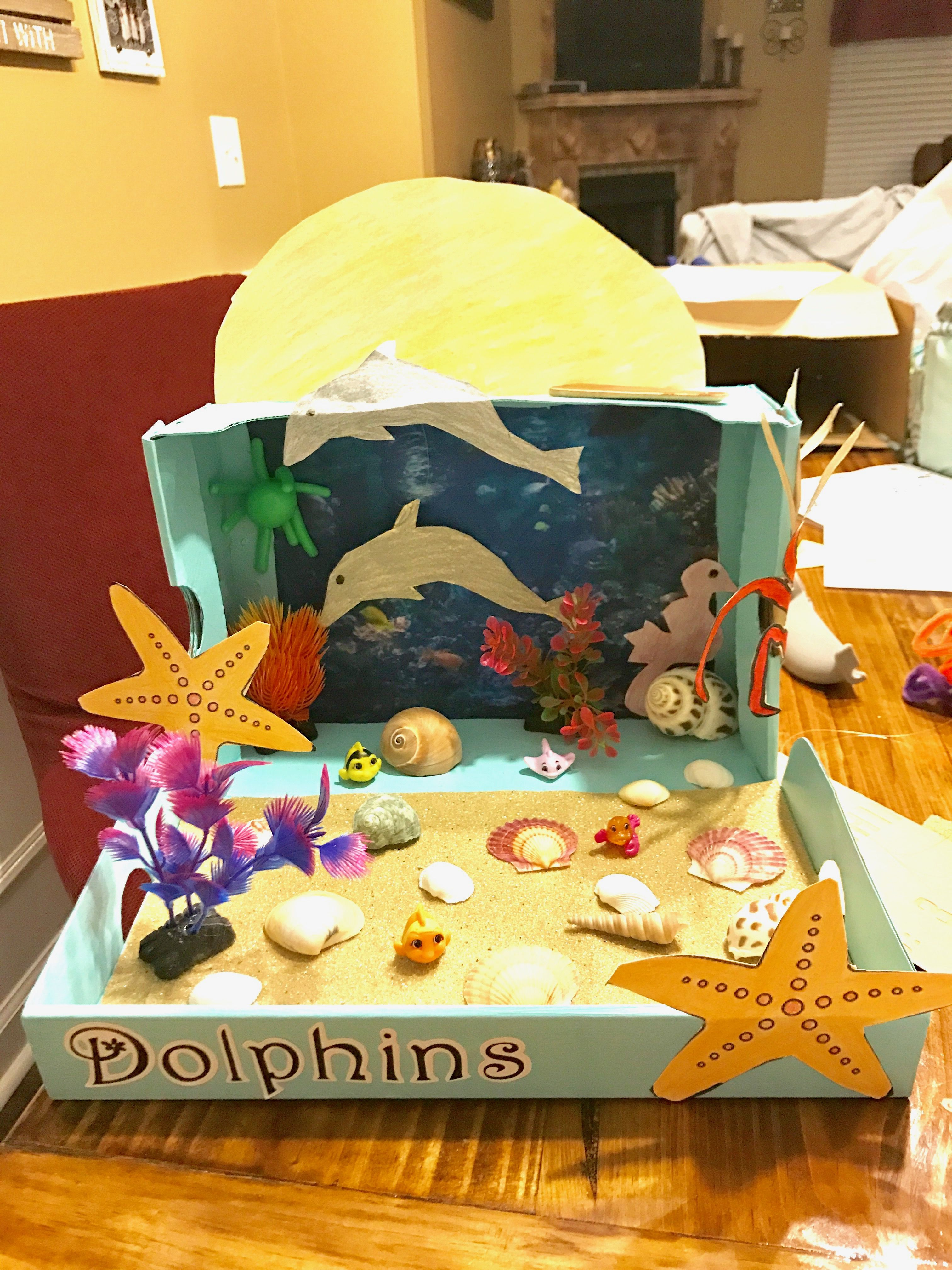 Kids Diorama With Details: Dolphin Diorama Project