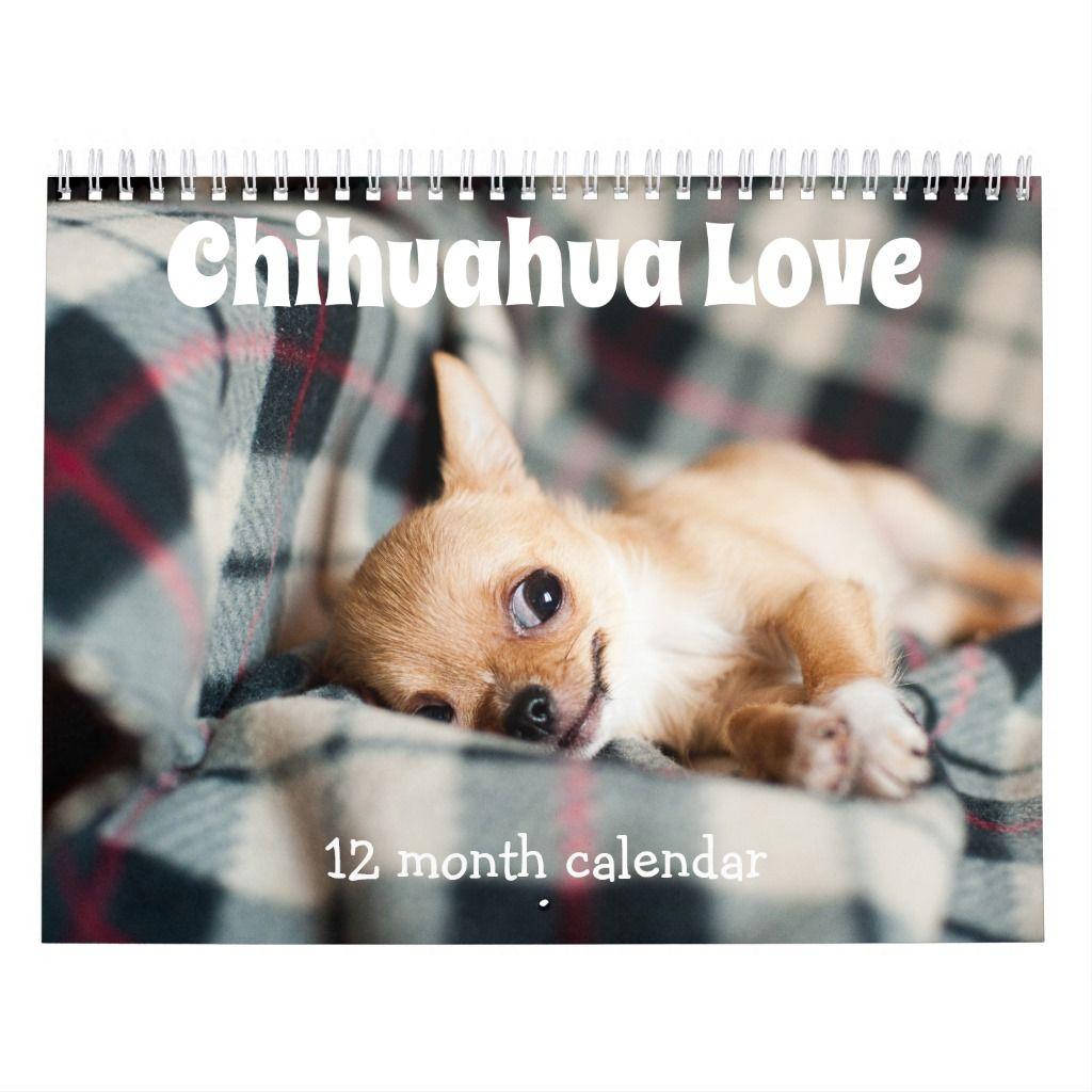Adorable Chihuahua Dogs 2020 Calendar