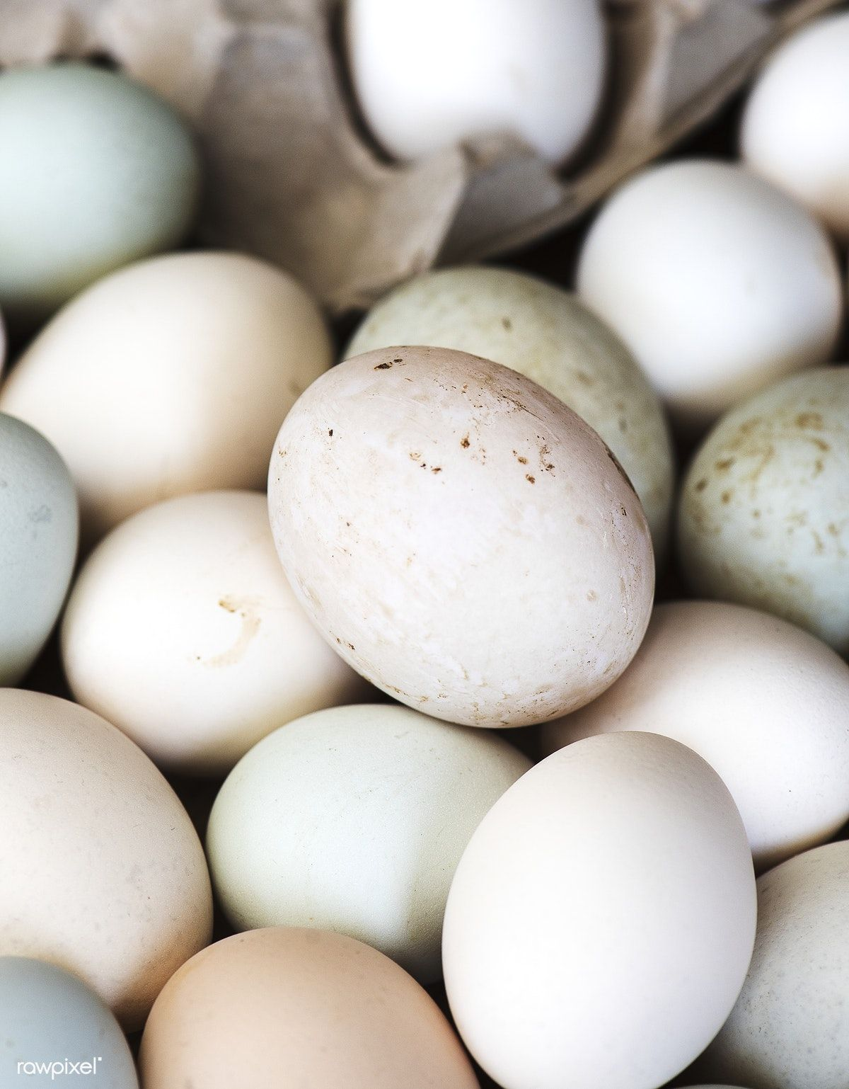 Fresh Organic Eggs From The Farm Free Image By Rawpixel Com