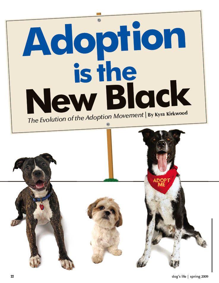 Hugedomains Com Dog Quotes Foster Dog Dog Adoption