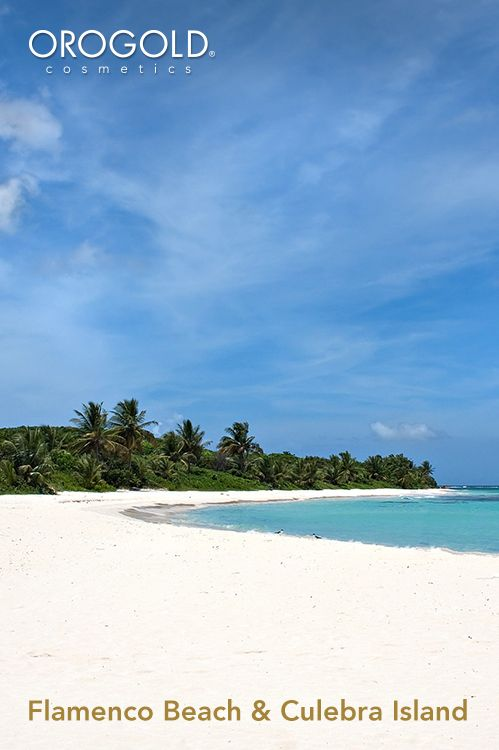 orogold reviews the best things to do in flamenco beach and culebra rh pinterest com things to do at a beach wedding things to do at the beach on a rainy day
