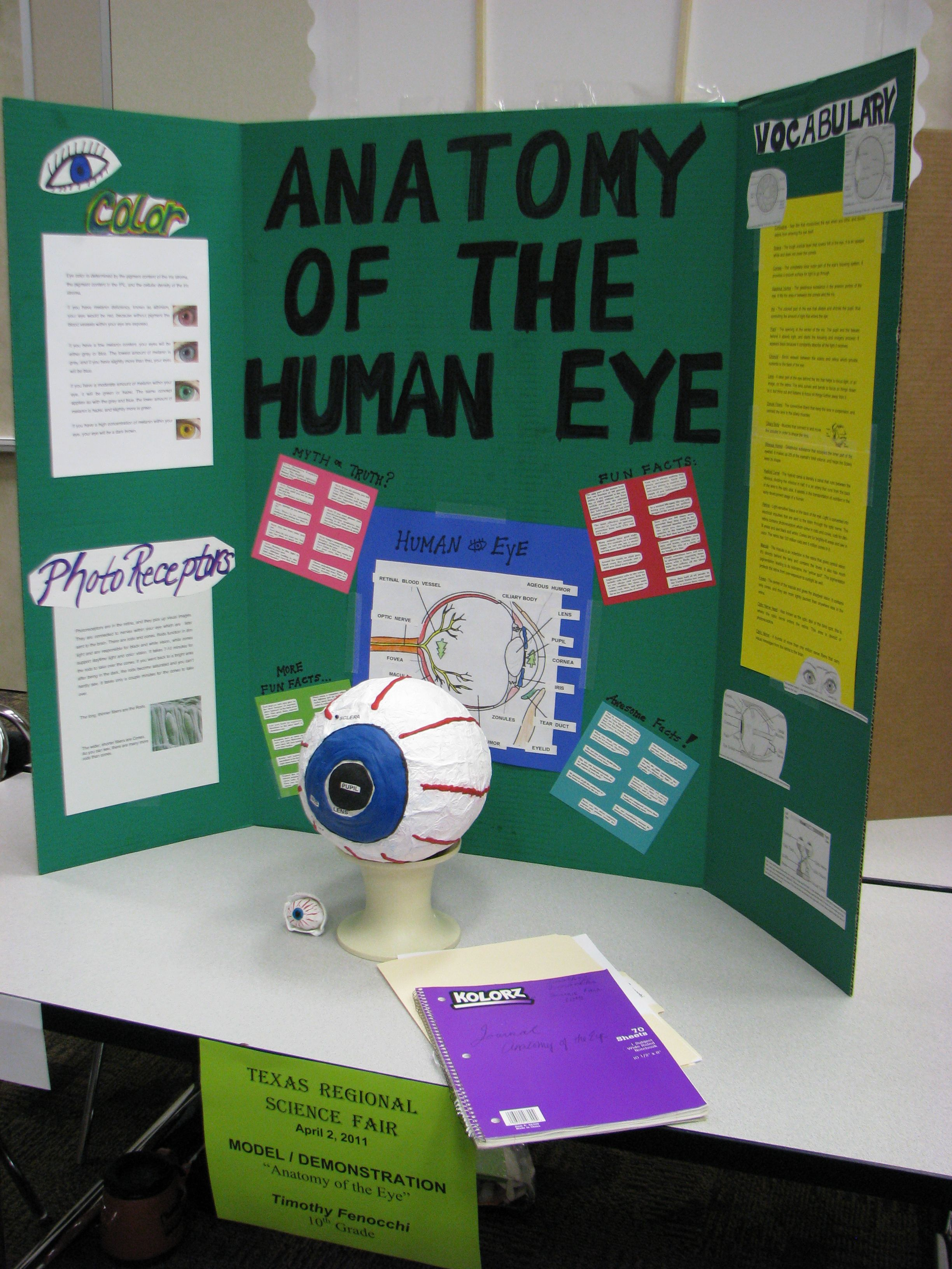 Pin By M Abdelahzadeghan On Science Fair With Images