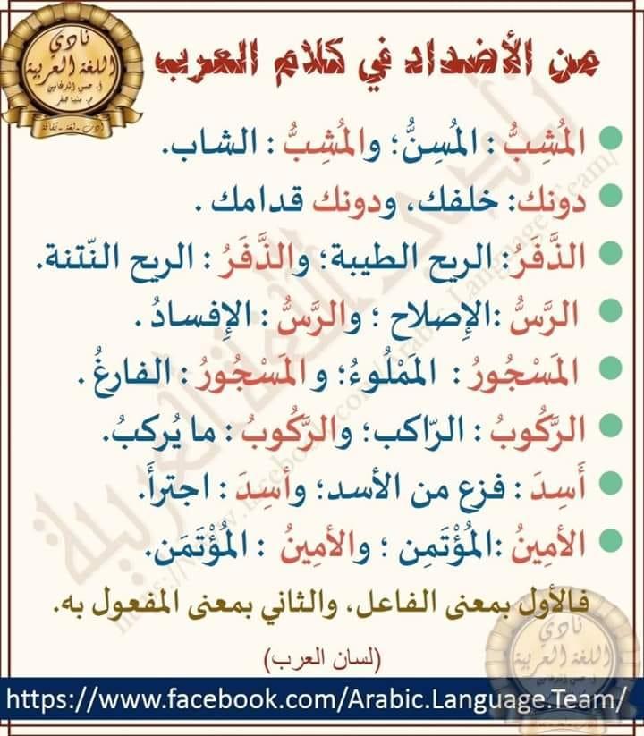 1 Linkedin Words Quotes Beautiful Arabic Words Arabic Langauge
