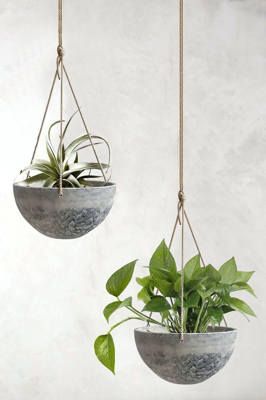 Best Hanging Planters 2020 Indoor Outdoor Hanging Plants