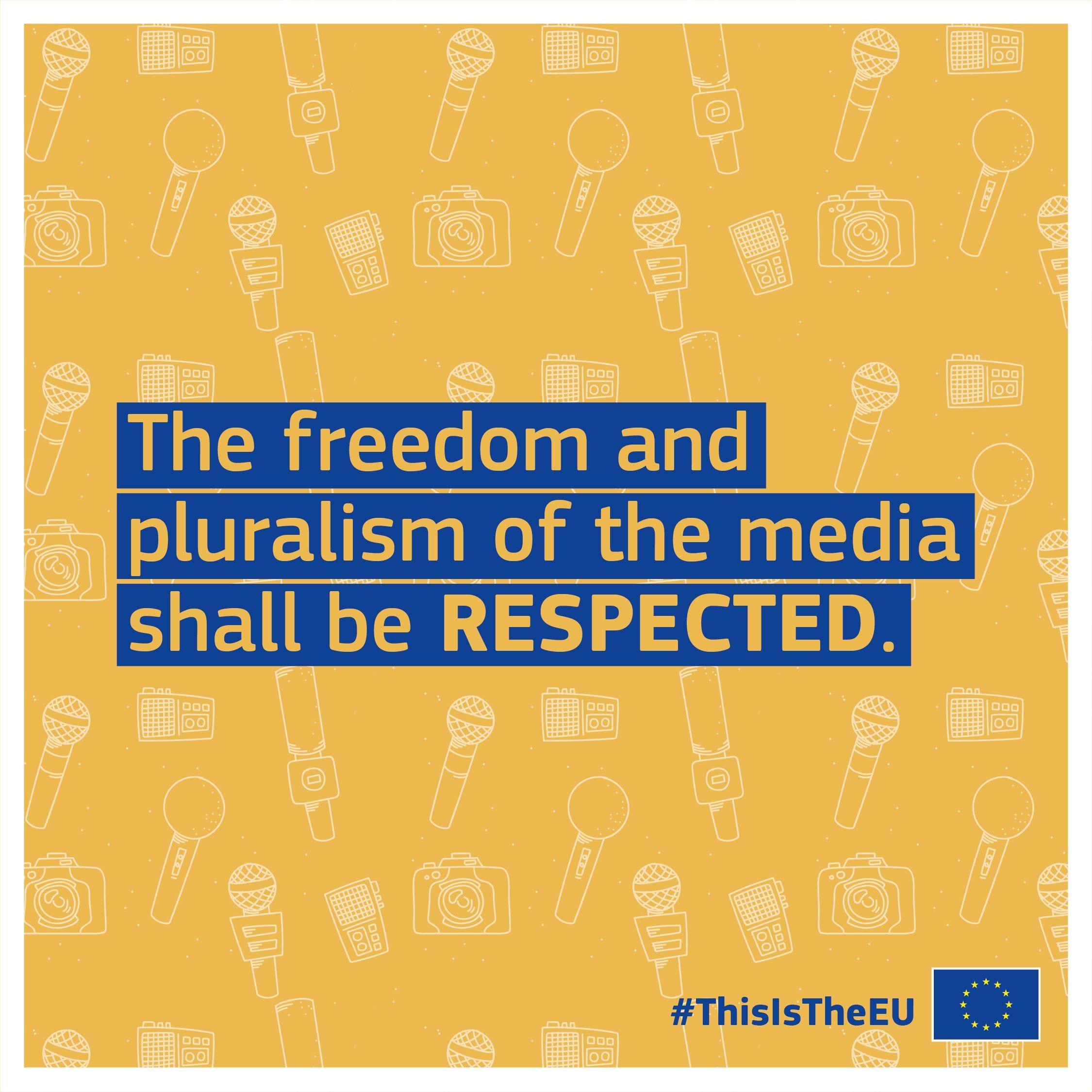 Thisistheeu Media Freedom Freedom Expressions Human Dignity