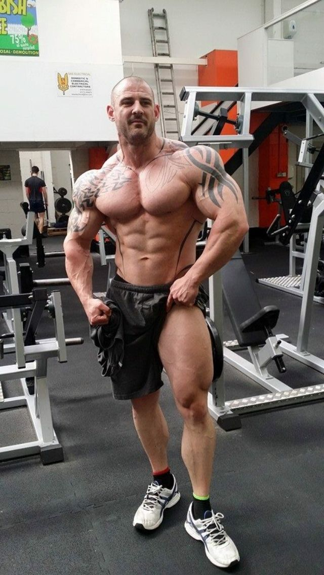 Pin di Miguel Gonzalez su Fitness, Bodybuilding, Inspiration - muscle chart template