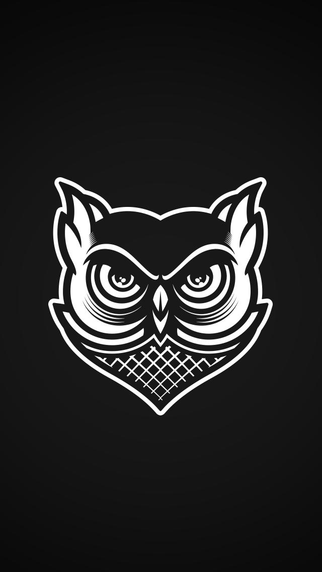 Owl Wallpaper Musketon In 2019 Owl Wallpaper Wallpaper