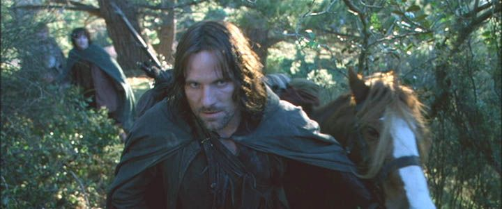 Frodo Where Are You Taking Us Aragorn Into The Wild
