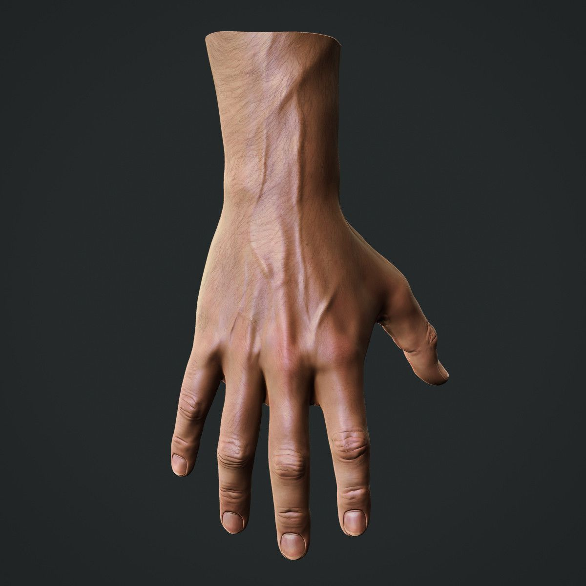 Male hand reference   Male body reference   Pinterest ...