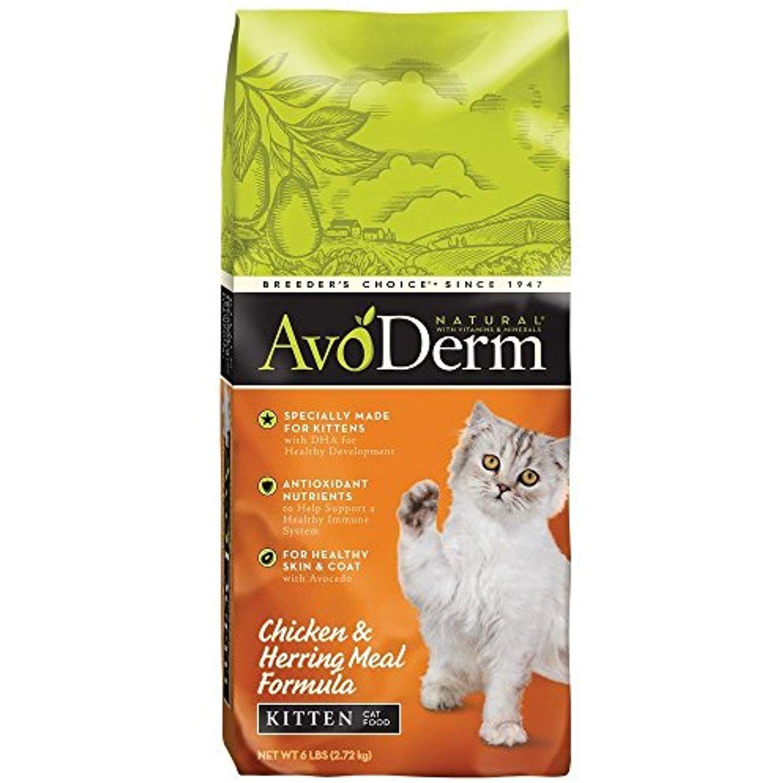 Blue Buffalo Wilderness 100 Grain Free Chicken Kitten Dry Cat Food 4lb Kitten Food Dry Cat Food Best Cat Food
