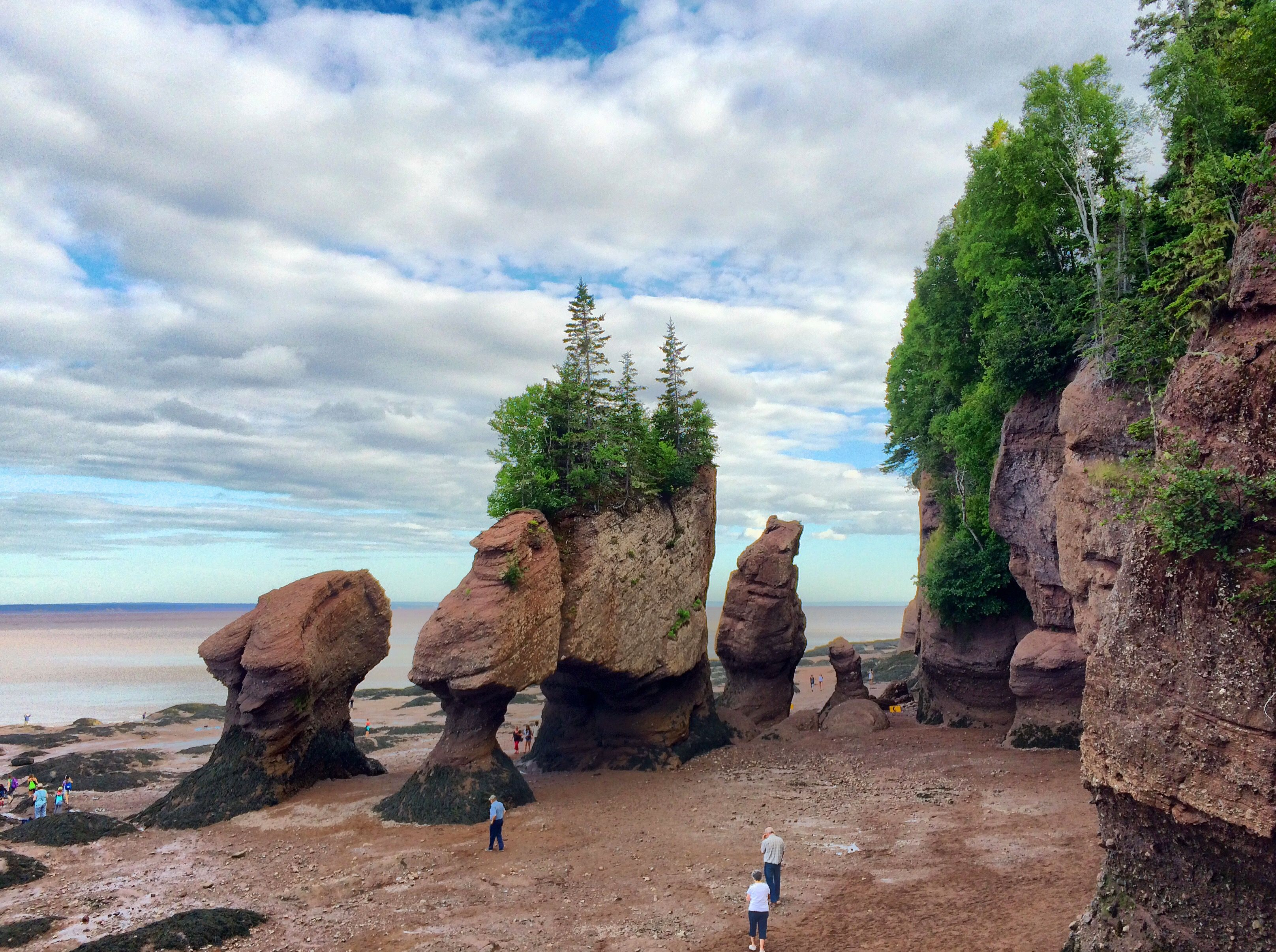 Traveling By The Seat Of Our Pants Bay Of Fundy New Brunswick Canada Travel New Brunswick New Brunswick Canada