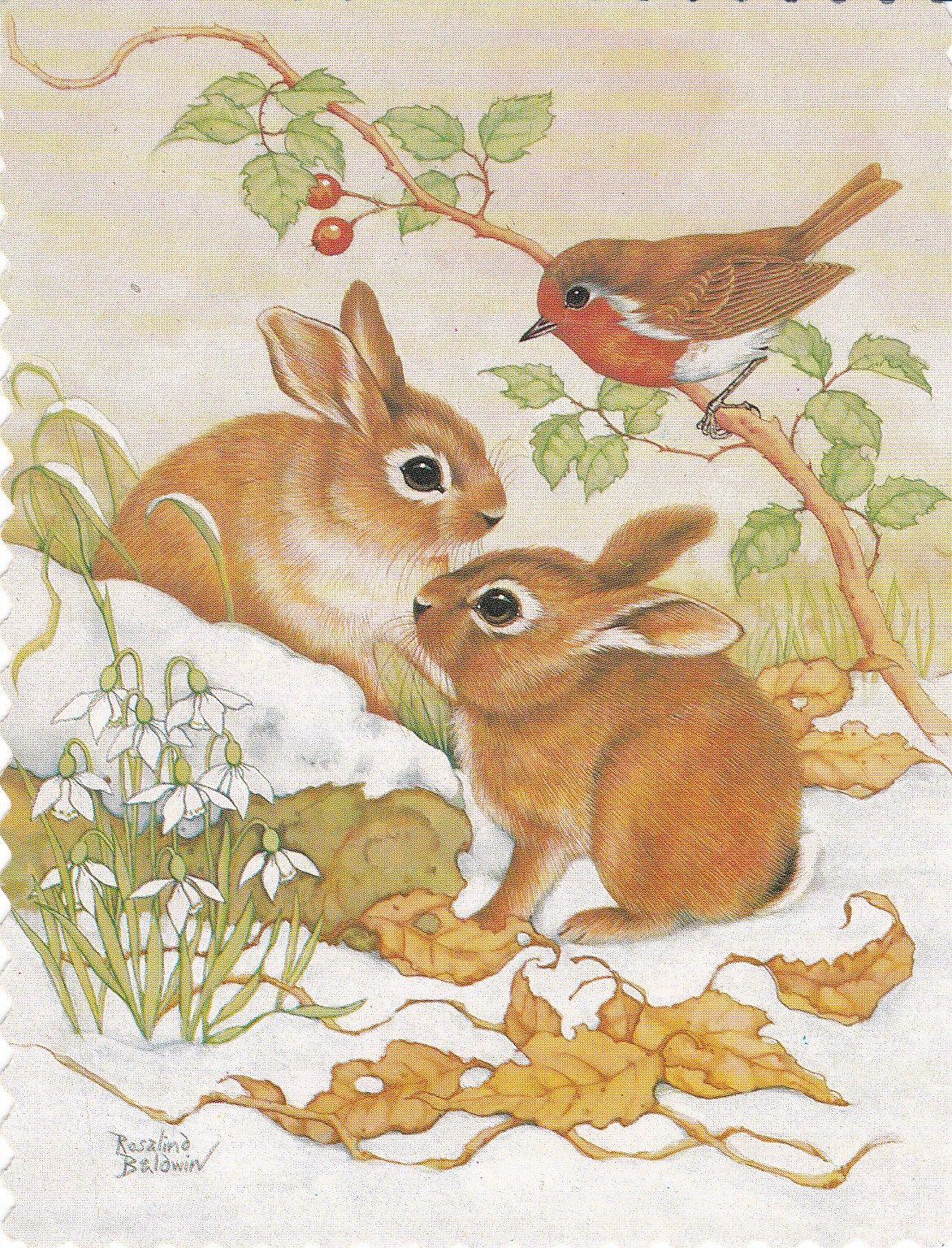 Картинки зайчата и бельчата
