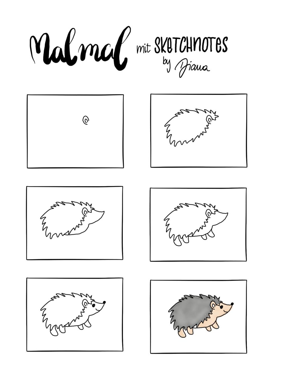 Sketchnotes Anleitung zum Nachzeichnen - Igel #igelbastelnfensterbild