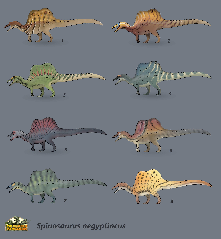 Spinosaurus Color Variations | Prehistoric Kingdom | Drawing ...