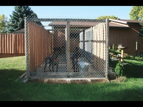Easy To Build Dog House With Recycled Material With Images Dog