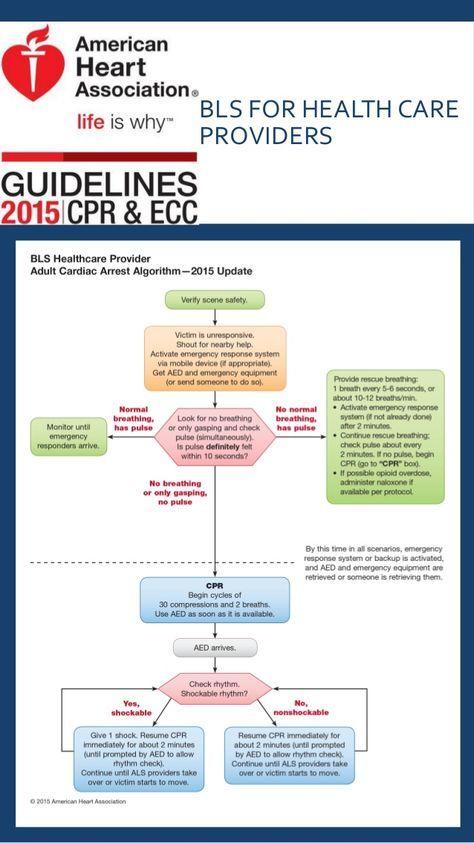 aha 2015 algorithms for bls acls pals cpr recert time rh pinterest com BLS CPR Written Test BLS CPR Card Template