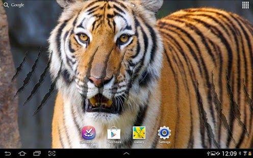 Top Android Tiger Live Wallpaper Tiger Live Wallpaper Free Download Tigers Live Live Wallpapers Tiger