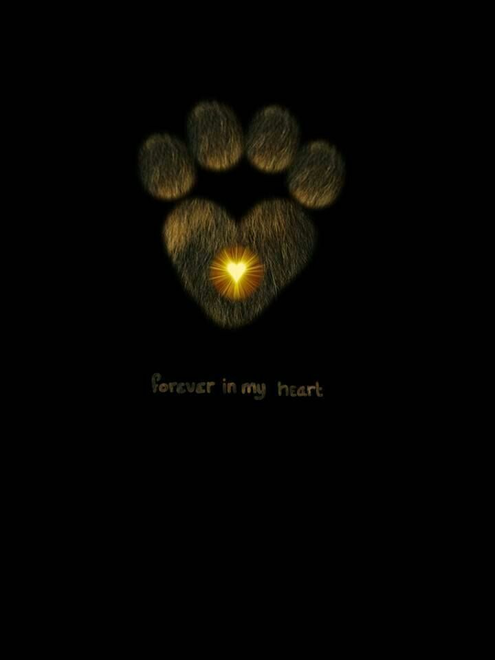 Always and Forever in our hearts baby boy xxxxx