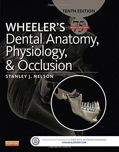 Wheeler\'s Dental Anatomy, Physiology and Occlusion, 10e | 1st Year ...