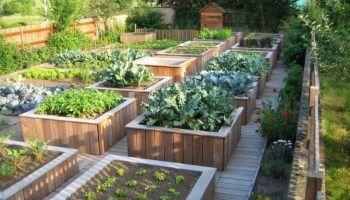 Comment Amenager Son Jardin Et Organiser L Espace Avec Images