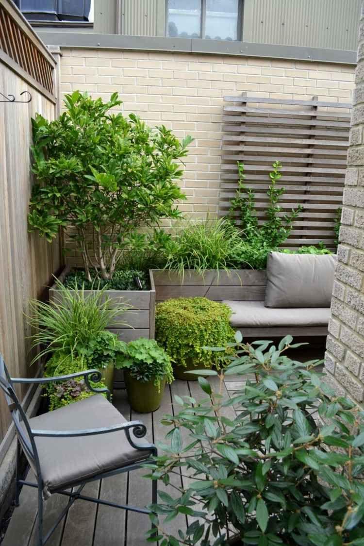 grüne pflanzen für einen balkon aus holz | balkon, garten, pflanzen