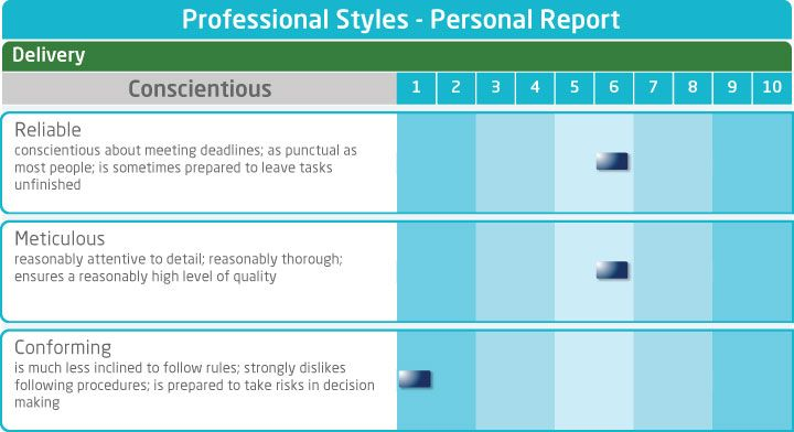 Saville Consulting Wave personal report - Professional Styles - consulting report