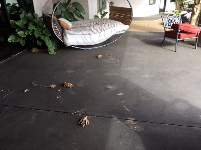 Gray Ashlar Slate Stamped Concrete Patio With Stained Black