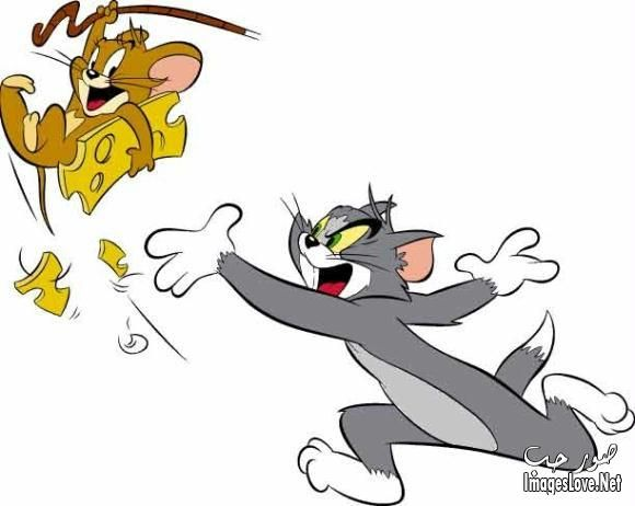 Anime Images توم وجيرى اجدد صور توم وجيرى Tom And Jerry Funny Tom And Jerry Cartoon Tom And Jerry
