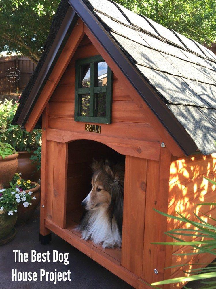 Building The Best Dog House Casas Para Perros Casas Para Perros