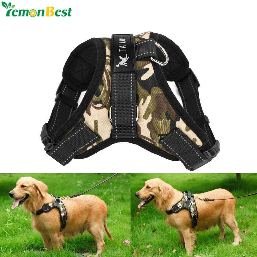 Pet Supplies Large Dog Harness Collar Soft Adjustable Pawsfamily