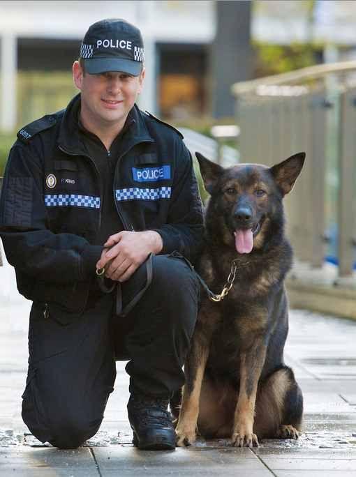 West Midlands Police K9 Finds Missing Artistic Boy In Freezing