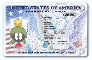 Passport USA 02 PSD format - Template Passport USA | Passport PSD ...