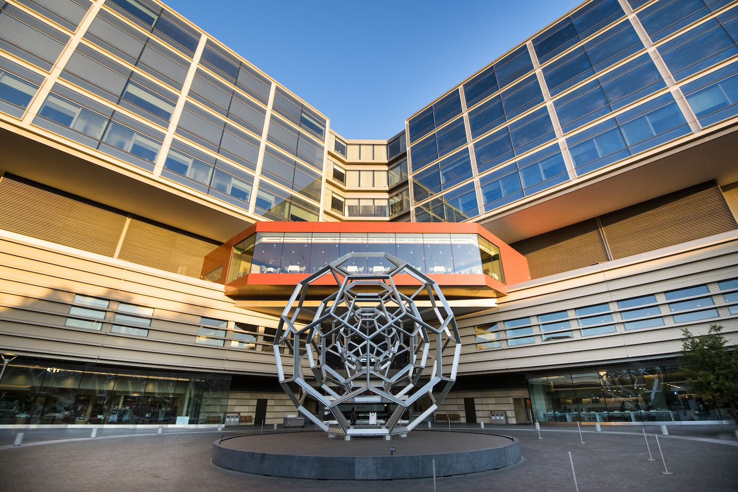 At Stanford 2019 The Year In Review Stanford News Stanford Hospital New Hospital Hospital