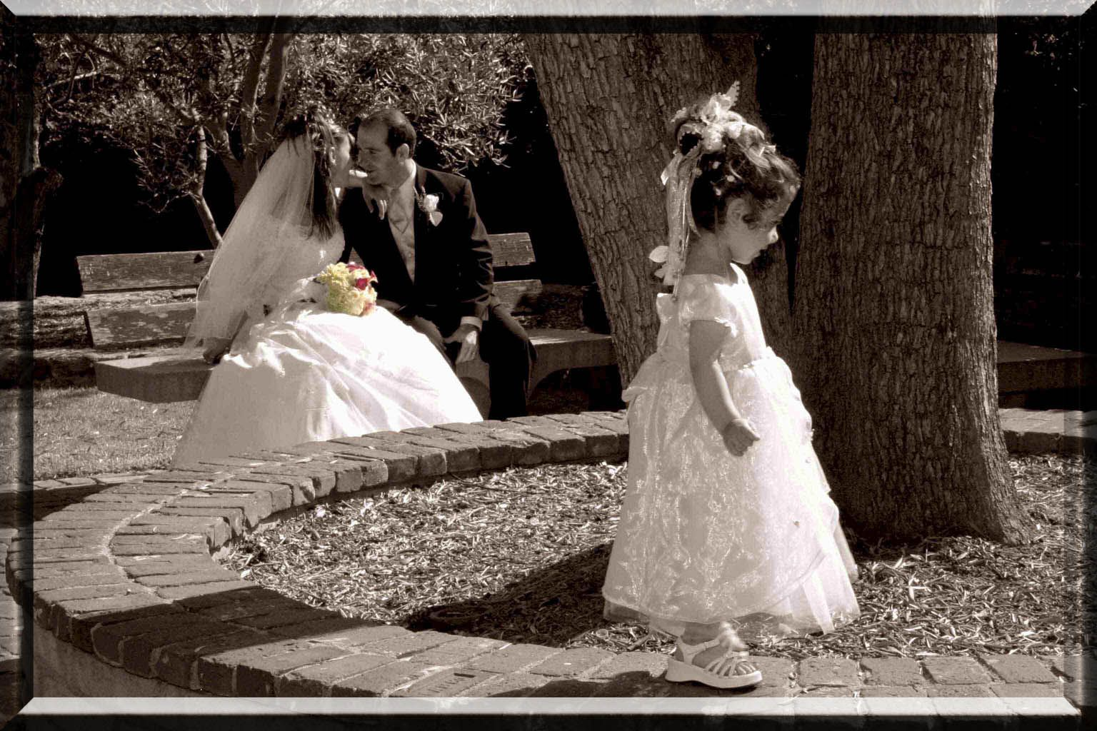 Cheap Wedding Photography Tips: Wedding Photography 1024x682