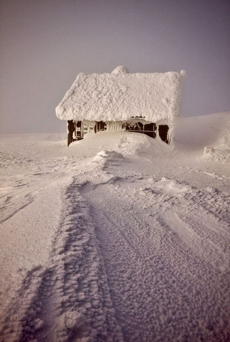 dangel799: Deep Snow by Pietre Krzackowski ~ I'd love to have some snow, but not this much :)