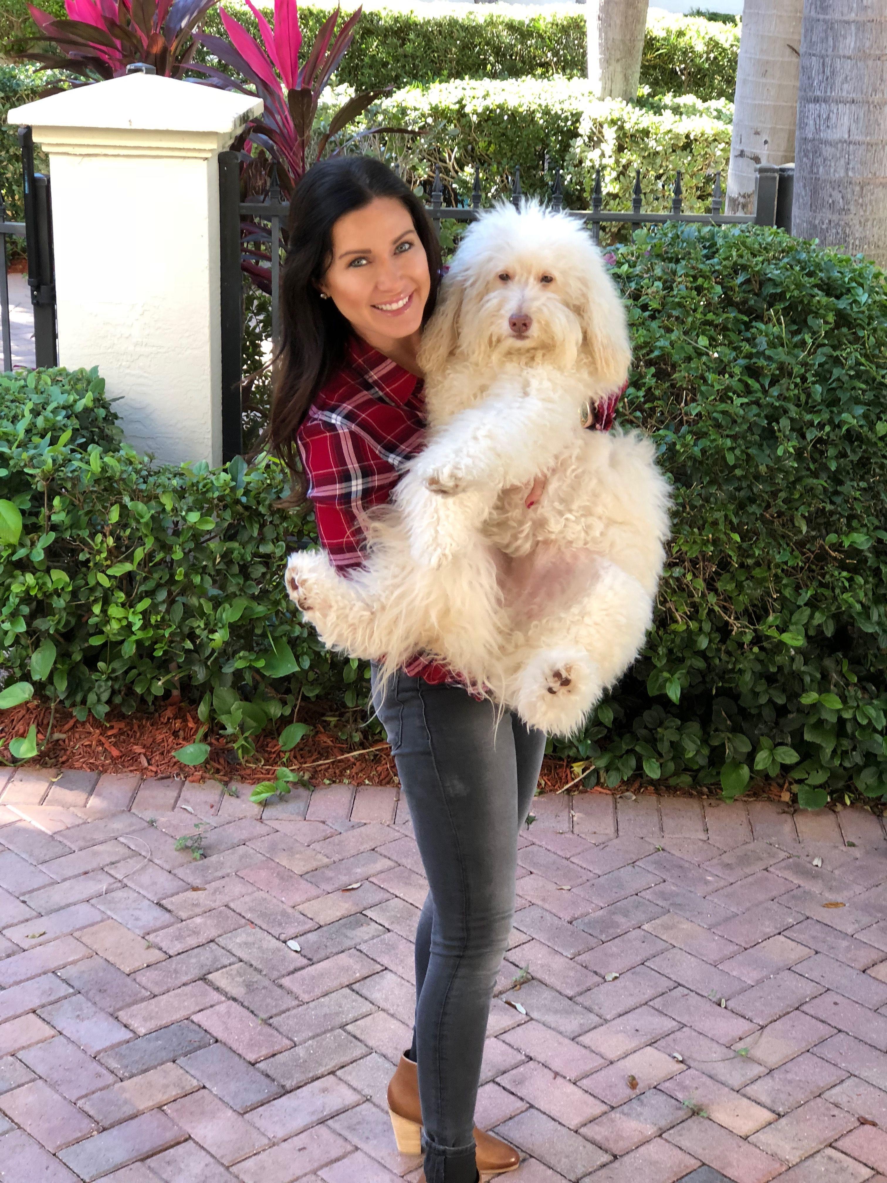 Bark Bistro / Human Grade Dog Food / Pinterest/ Boca Raton