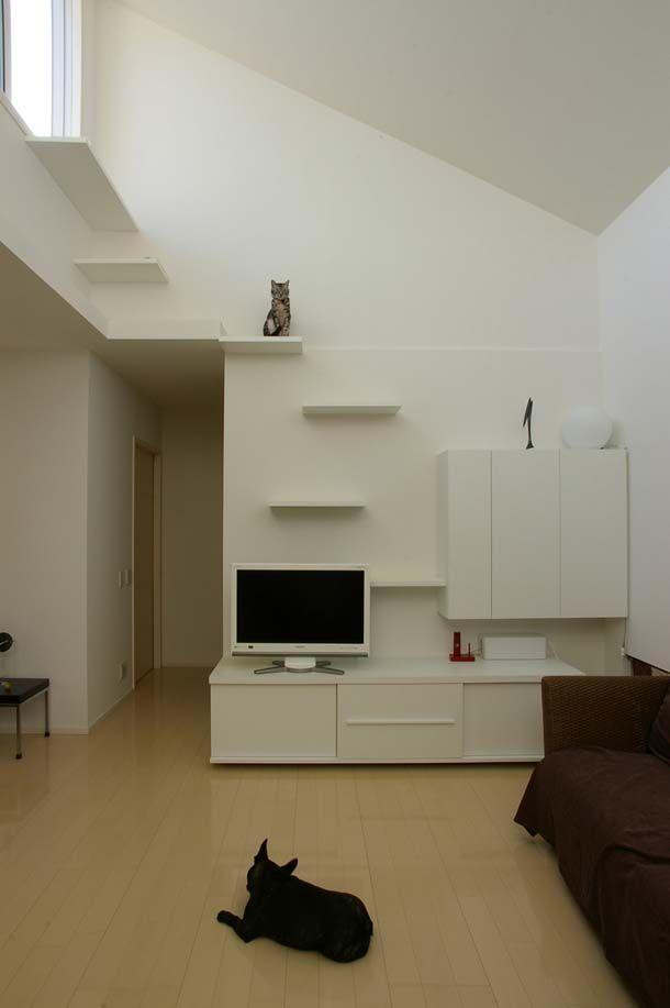 大切なキミが過ごしやすい家にするよ Roomie ルーミー 猫部屋 猫の遊び場 ペット