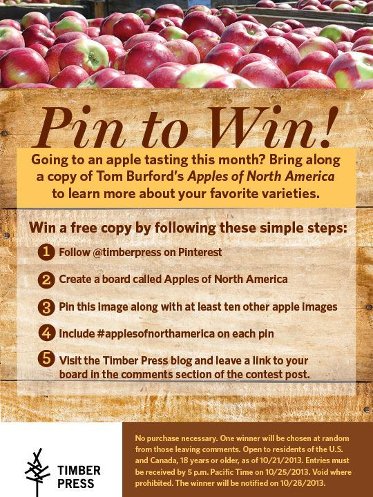 Pin to win! Contest idea  Build and increase engagement