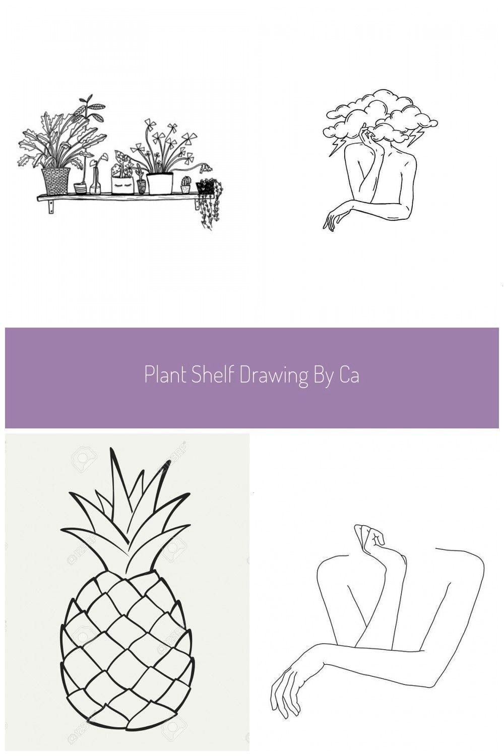 shelf drawing by Carissa Tanton Available as a print on Etsy Botanical illustration Black and white line drawing Crazy plant lady black and white House Plant Shelfie Illu...