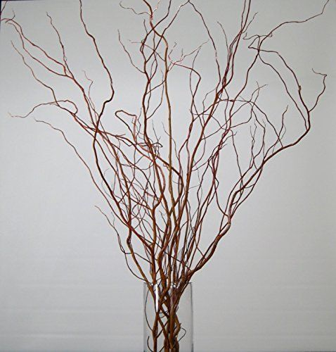 Fresh Or Dried Curly Willow Sizes From 3 To 6 Tall 7 Colors To Choose From Plenty Of Size An Willow Branches Branch Centerpieces Willow Branch Centerpiece