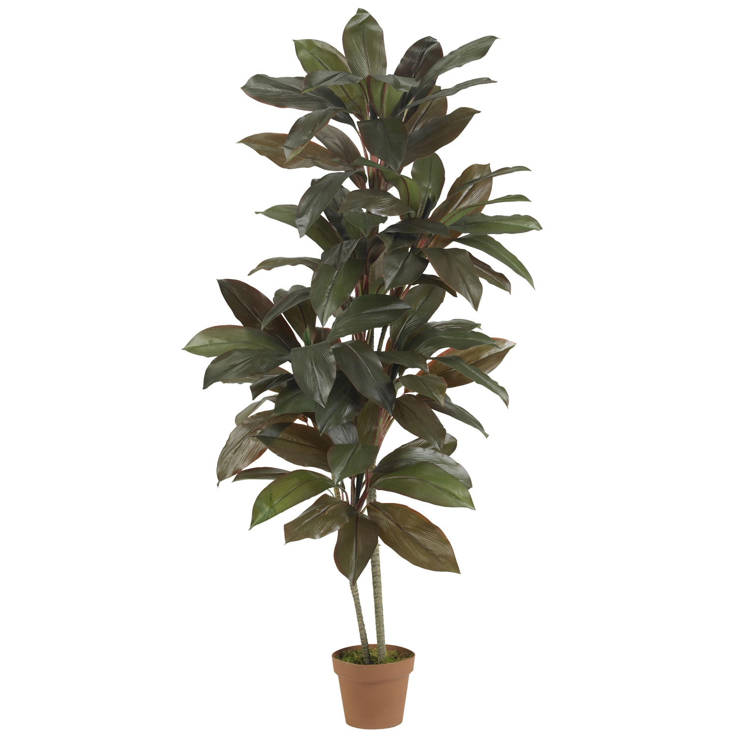 Nearly Natural Cordyline 5-foot Silk Plant (Real Touch) (5 ft ...