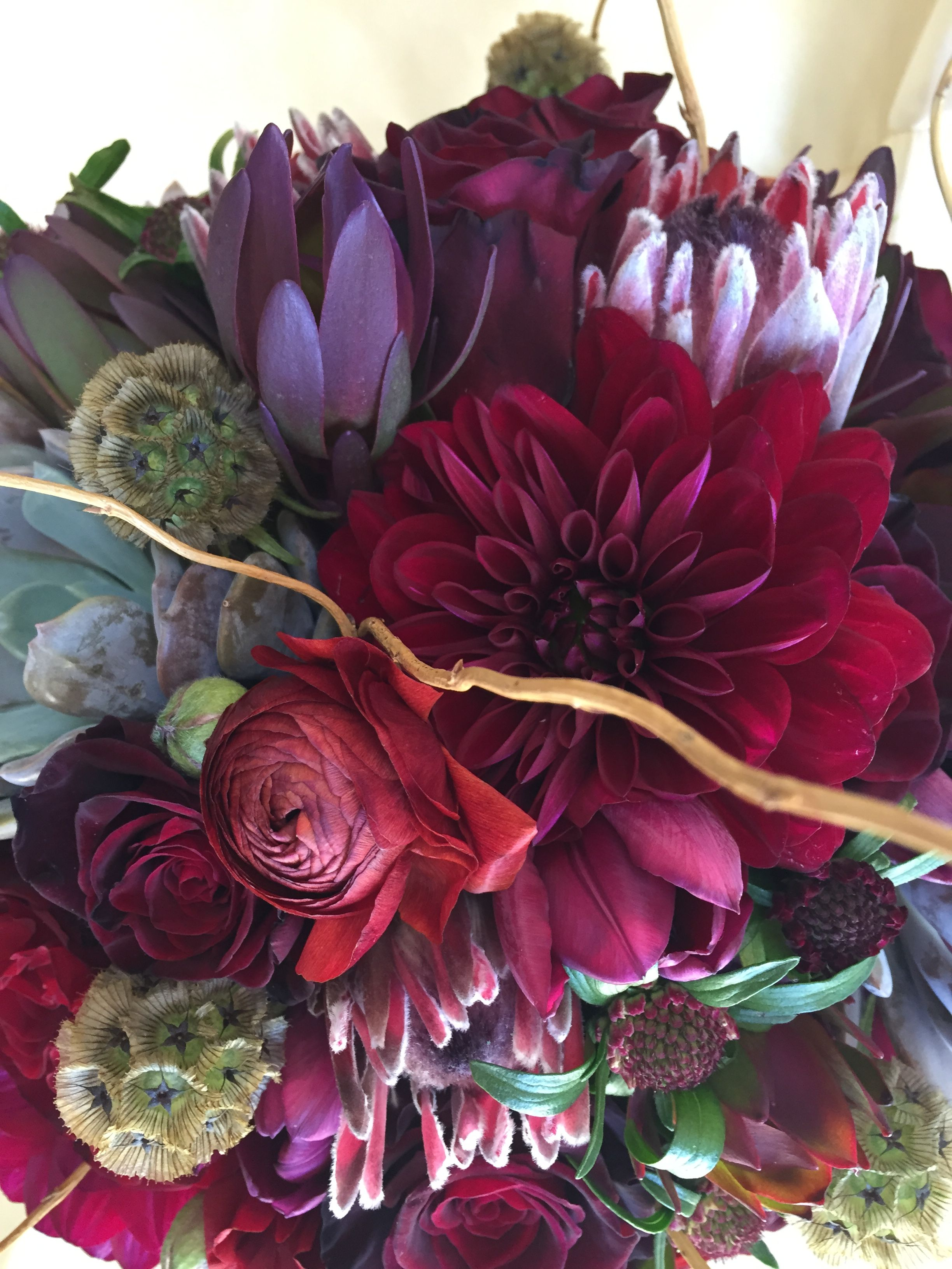 Dark and Bold! This rich looking bouquet features plum colored ...